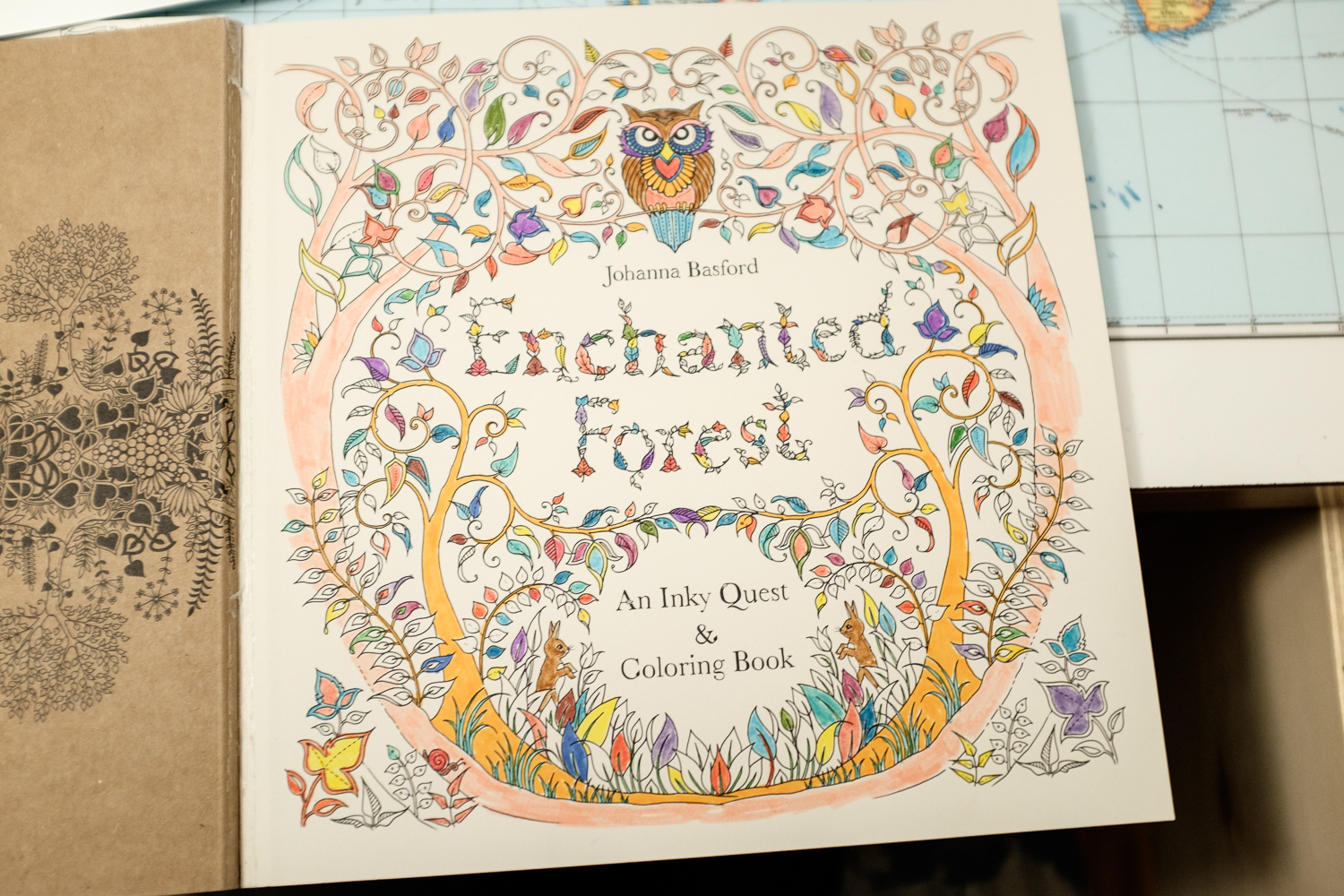 Book Enchanted Forest DSCF6117